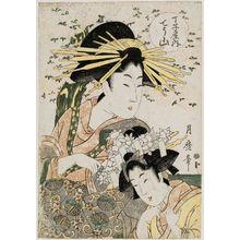 喜多川月麿: Chôzan of the Chôjiya - ボストン美術館