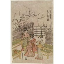 Kitagawa Tsukimaro: Kameido Umeyashiki, from the series Edo Meisho Mitate Jukkei (Parody on Ten Views, Famous Places in Edo) - Museum of Fine Arts