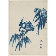 勝川春好: Kingfisher on Bamboo - ボストン美術館
