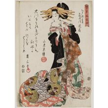 Kikugawa Eizan: Hanaôgi of the Ôgiya, in the Shin Yoshiwara in Edo, from the series Comparisons of Representative Customs (Tatoegusa fûzoku awase) - Museum of Fine Arts