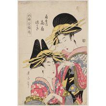 菊川英山: Hanaôgi and Tsukasa of the Ôgiya, from the series Array of Yoshiwara Beauties in Full Bloom (Hokkaku zensei soroe) - ボストン美術館
