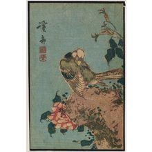 Keisai Eisen: Bird and flowers - Museum of Fine Arts