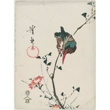Keisai Eisen: Kingfisher and Wild Chrysanthemum - Museum of Fine Arts