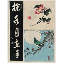渓斉英泉: Camellia (TL), Warbler on Plum Branch (BR), Calligraphy (L) - ボストン美術館