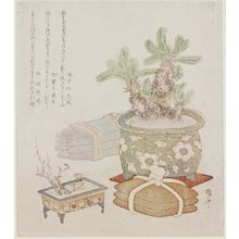 柳々居辰斎: Bundles of Iron and Copper Ingots with a Potted Sago Palm, Plum, and Adonis Plant - ボストン美術館