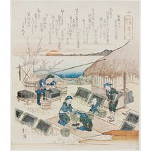 Totoya Hokkei: Hamagawa, from the series Souvenirs of Enoshima (Enoshima kikô) - Museum of Fine Arts