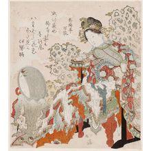 Totoya Hokkei: Chinese Beauty - Museum of Fine Arts