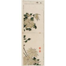 Taigaku: Flowers and leaves - Museum of Fine Arts
