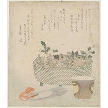 蹄斎北馬: The Seven Herbs - ボストン美術館