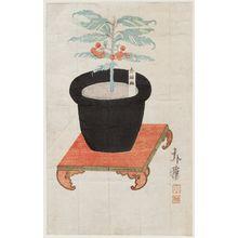 Katsushika Hokuga: Potted Plant - Museum of Fine Arts