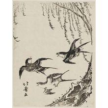 昇亭北壽: Swallows Flying Past Willow Tree - ボストン美術館