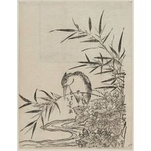 Shotei Hokuju: Kingfisher and Peony - Museum of Fine Arts