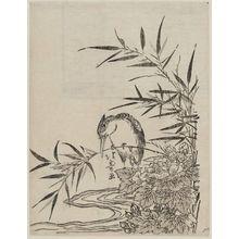 昇亭北壽: Kingfisher and Peony - ボストン美術館