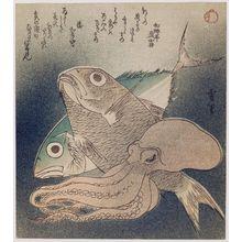 Setsuri: Fish and Octopus - Museum of Fine Arts