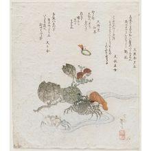 Katsushika Taito II: Crabs - ボストン美術館