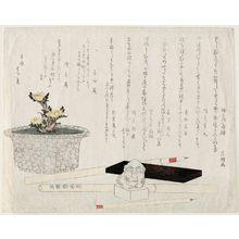 Hishikawa Sôri: Potted Adonis Plant, Brushes, Ink Stick, and Seal - ボストン美術館