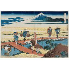葛飾北斎: Nakahara in Sagami Province (Sôshû Nakahara), from the series Thirty-six Views of Mount Fuji (Fugaku sanjûrokkei) - ボストン美術館