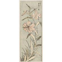 葛飾北斎: Yuri no hana (Single stalk of lilies); From Hokusai Gwaen vol. 3, sheet