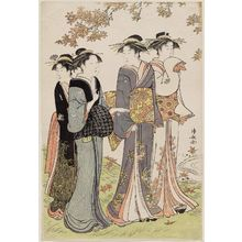 鳥居清長: Women under Maple Leaves, from the series Contest of Contemporary Beauties of the Pleasure Quarters (Tôsei yûri bijin awase) - ボストン美術館