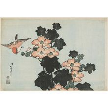 Katsushika Hokusai: Hibiscus and Sparrow, from an untitled series known as Large Flowers - Museum of Fine Arts