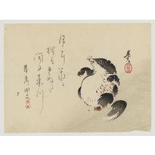 Shibata Zeshin: Racoon-dog (Tanuki) - Museum of Fine Arts