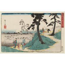 Utagawa Hiroshige: Listening to Crickets at Dôkan Hill (Dôkan-yama mushi-kiki no zu), from the series Famous Places in the Eastern Capital (Tôto meisho) - Museum of Fine Arts