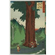 Utagawa Hiroshige II: The Yatate Cedar Tree in Kai Province (Kôshû Yatate sugi), from the series One Hundred Famous Views in the Various Provinces (Shokoku meisho hyakkei) - Museum of Fine Arts