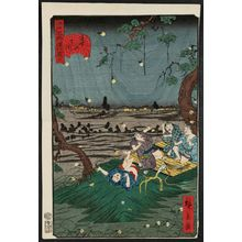 Utagawa Hirokage: No. 20, Listening to Crickets at Dôkan Hill (Dôkan-yama mushi-kiki), from the series Comical Views of Famous Places in Edo (Edo meisho dôke zukushi) - Museum of Fine Arts