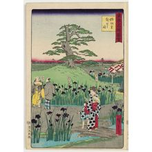 Utagawa Hiroshige III: Irises at Horikiri Village (Horikiri no sato hanashôbu), from the series Famous Places in Tokyo (Tôkyô meisho zue) - Museum of Fine Arts