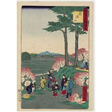 Utagawa Hiroshige III: Dôkan Hill (Dôkan-yama), from the series Famous Places in Tokyo (Tôkyô meisho zue) - Museum of Fine Arts