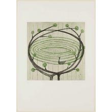 Minami Keiko: The Black Swan - Museum of Fine Arts