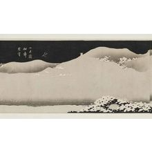 Jakuchu: Jokyoshu - Museum of Fine Arts