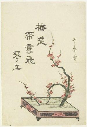喜多川歌麿: (Plum Flower Arrangement) - ミネアポリス美術館