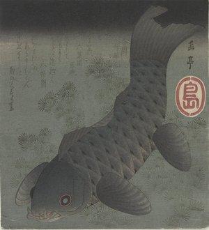 Yashima Gakutei: (Black Carp) - Minneapolis Institute of Arts