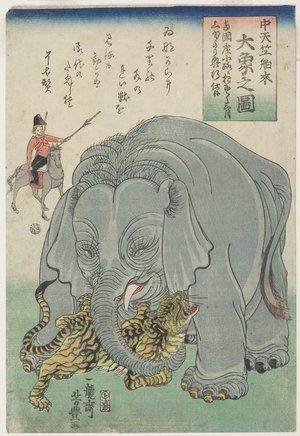 歌川芳豊: Elephant From India With Tiger - ミネアポリス美術館