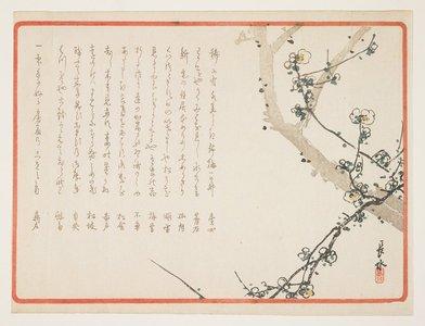Yabu Cho_sui: (Plum blossoms) - ミネアポリス美術館