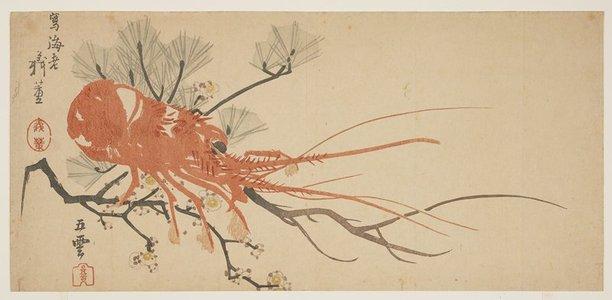 Goun Shibata Gito_: (Lobster, plum and pine branch) - ミネアポリス美術館