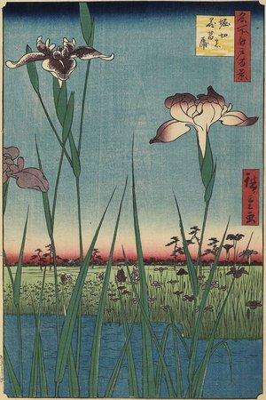 Utagawa Hiroshige: Iris Garden at Horikiri - Minneapolis Institute of Arts