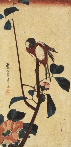 Utagawa Hiroshige: (Titmouse on Camellia) - Minneapolis Institute of Arts