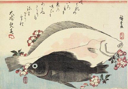 歌川広重: (Fluke and Black Bass, Cherry Blossoms) - ミネアポリス美術館