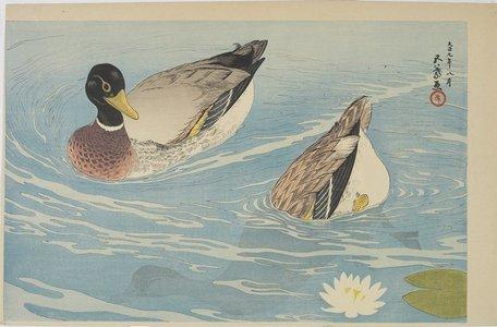 Hashiguchi Goyo: Ducks - Minneapolis Institute of Arts