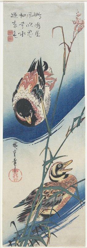歌川広重: Ducks and Reeds - ミネアポリス美術館