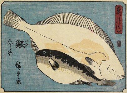 Utagawa Hiroshige: Globefish and Flounder - Minneapolis Institute of Arts