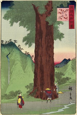 Utagawa Hiroshige II: Giant Ceder, Koshu Province - Minneapolis Institute of Arts