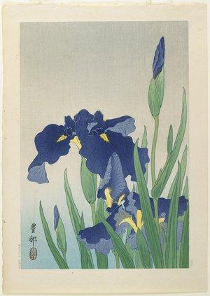 Shoson Ohara: Iris - ミネアポリス美術館