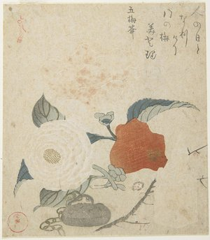 窪俊満: (Plum Branch, a Peony Flower and a Metal Seal) - ミネアポリス美術館