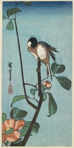 Utagawa Hiroshige: (Titmouse on Camelia) - Minneapolis Institute of Arts