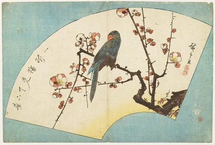 歌川広重: (Parrot on a Flowering Plum) - ミネアポリス美術館