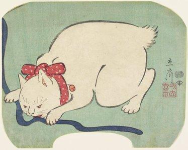 二歌川広重: A White Cat Playing with a String - ミネアポリス美術館