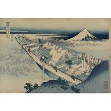 葛飾北斎: Ushibori in Hitachi Province - ミネアポリス美術館